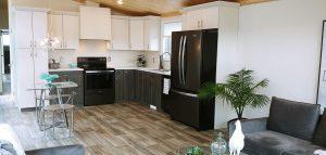Iconic Island Dwellings Kitchen